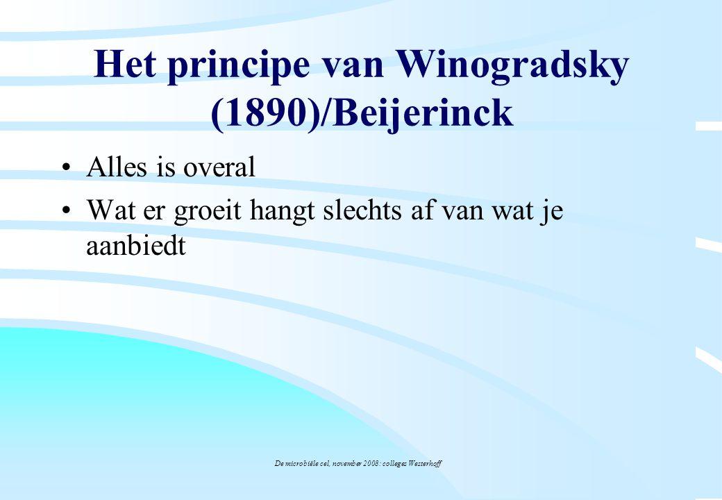 De microbiële cel, november 2008: colleges Westerhoff Alles is overal Wat er groeit hangt slechts af van wat je aanbiedt Het principe van Winogradsky