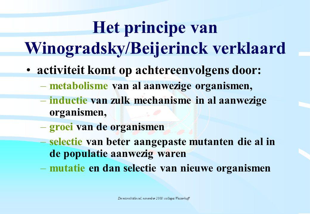 De microbiële cel, november 2008: colleges Westerhoff Het principe van Winogradsky/Beijerinck verklaard activiteit komt op achtereenvolgens door: –met