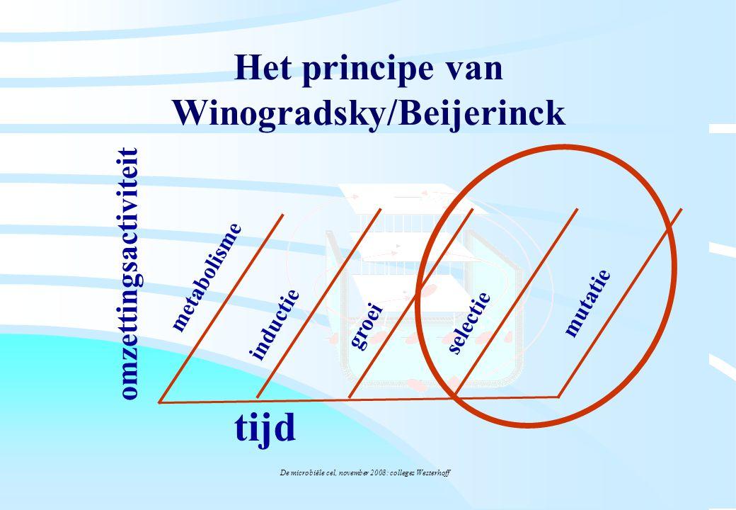 De microbiële cel, november 2008: colleges Westerhoff Het principe van Winogradsky/Beijerinck tijd omzettingsactiviteit inductie metabolisme groei sel
