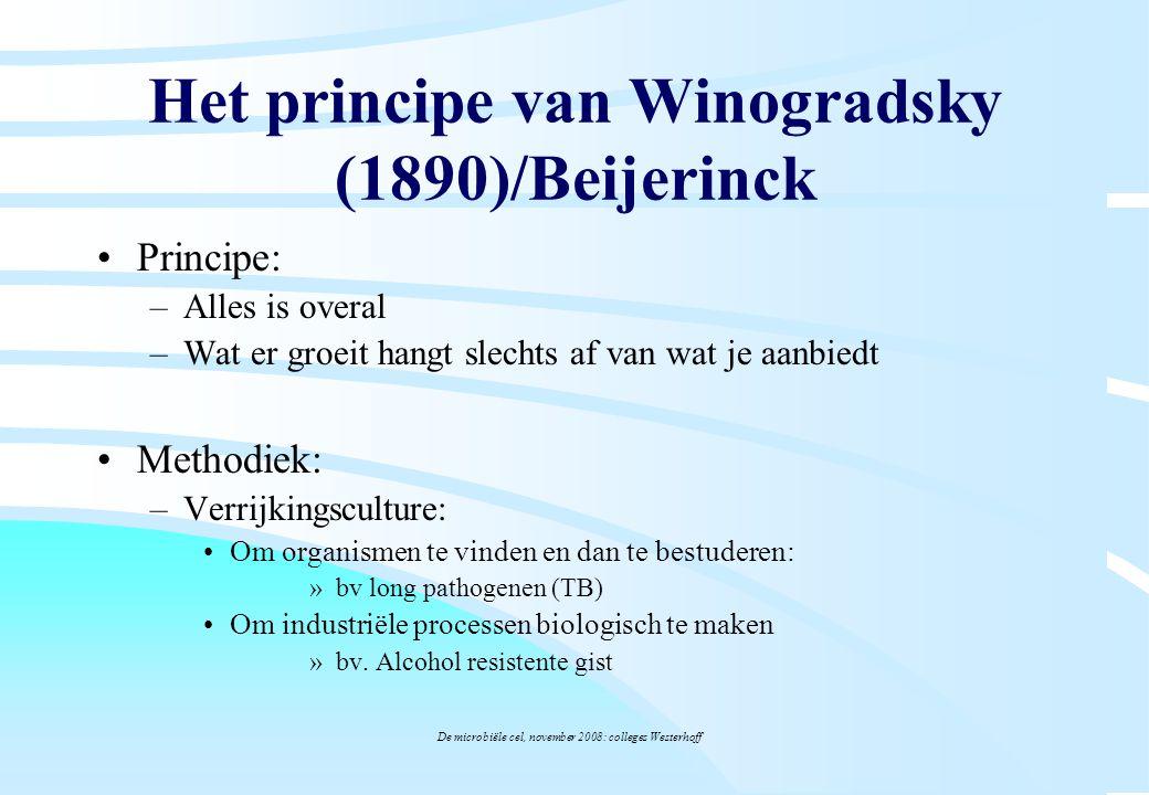 De microbiële cel, november 2008: colleges Westerhoff Principe: –Alles is overal –Wat er groeit hangt slechts af van wat je aanbiedt Methodiek: –Verri