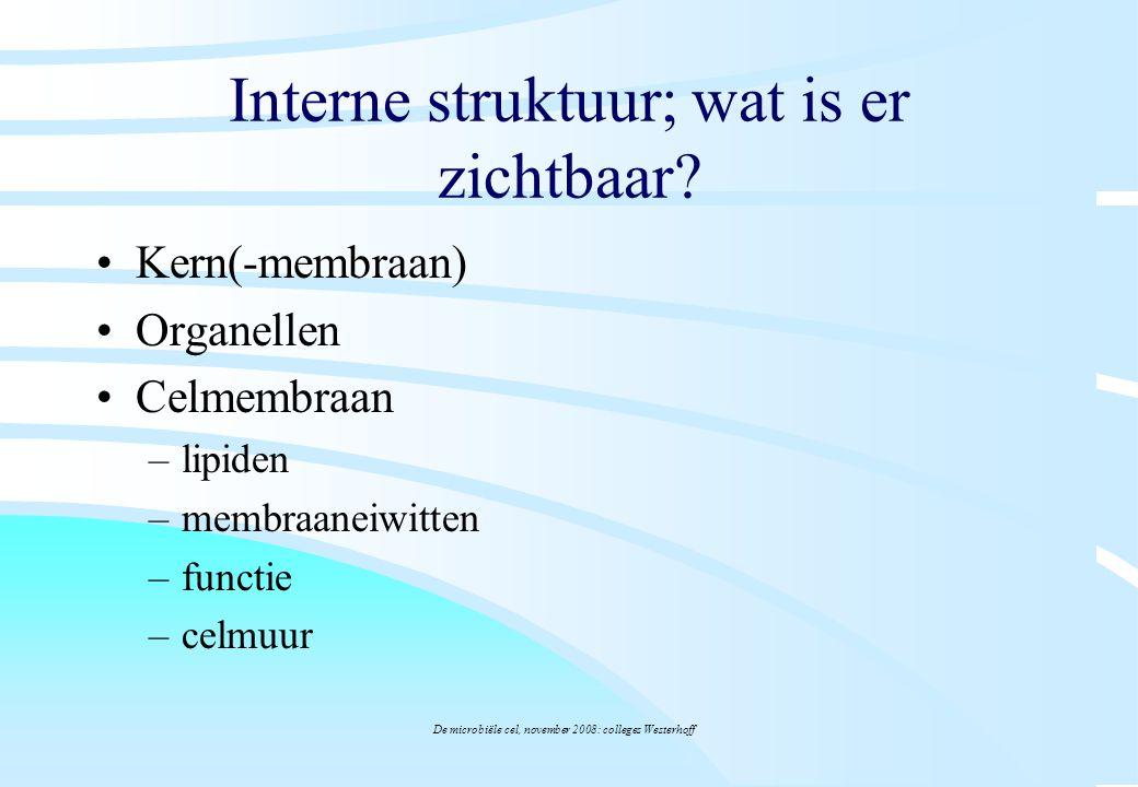 De microbiële cel, november 2008: colleges Westerhoff Interne struktuur; wat is er zichtbaar? Kern(-membraan) Organellen Celmembraan –lipiden –membraa