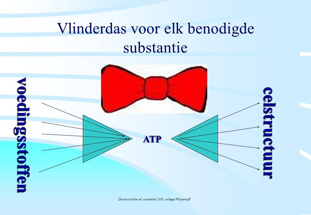 De microbiële cel, november 2008: colleges Westerhoff Vlinderdas voor elk benodigde substantie ATP voedingsstoffen celstructuur