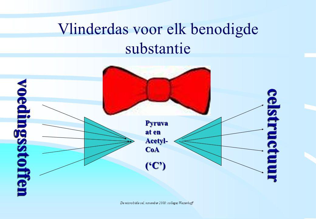 De microbiële cel, november 2008: colleges Westerhoff Vlinderdas voor elk benodigde substantie Pyruva at en Acetyl- CoA ('C') voedingsstoffen celstruc