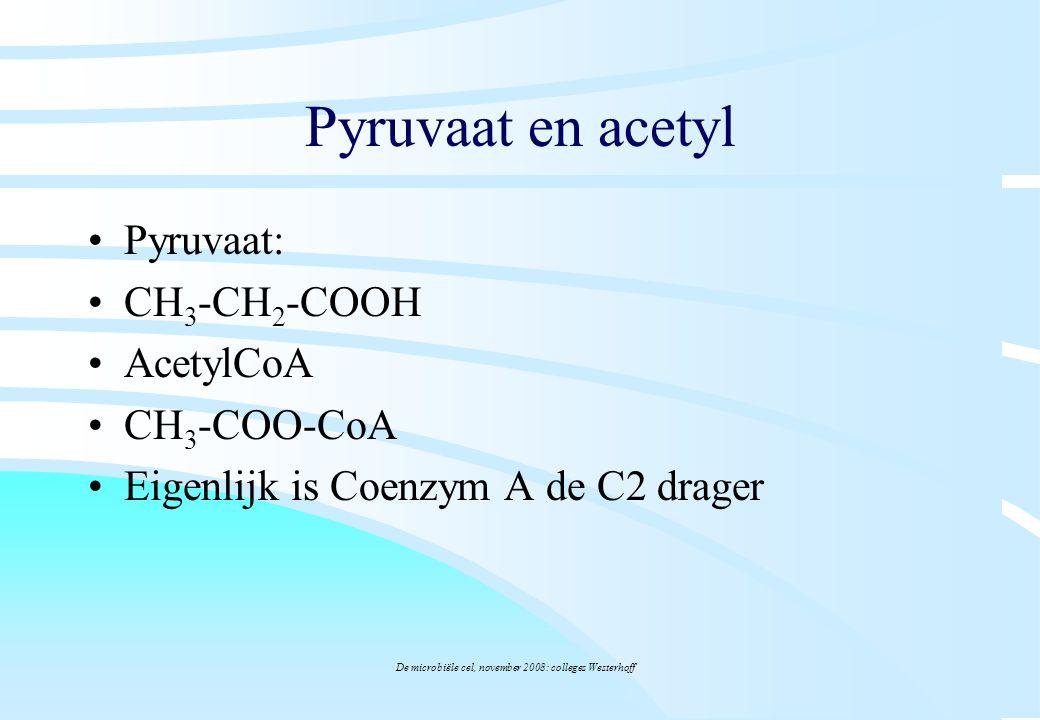De microbiële cel, november 2008: colleges Westerhoff Pyruvaat en acetyl Pyruvaat: CH 3 -CH 2 -COOH AcetylCoA CH 3 -COO-CoA Eigenlijk is Coenzym A de