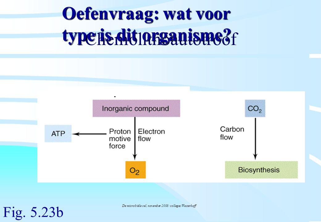 De microbiële cel, november 2008: colleges Westerhoff Chemolithoautotroof Fig. 5.23b Oefenvraag: wat voor type is dit organisme?