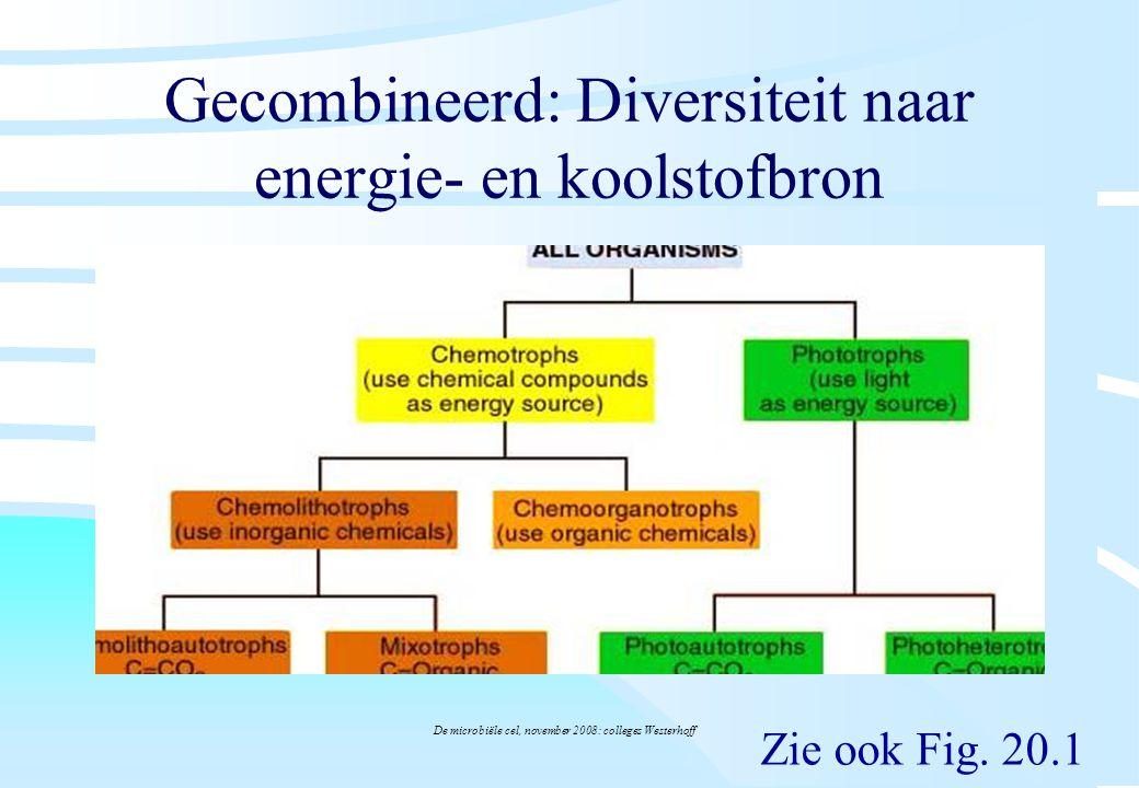 De microbiële cel, november 2008: colleges Westerhoff Gecombineerd: Diversiteit naar energie- en koolstofbron Zie ook Fig. 20.1