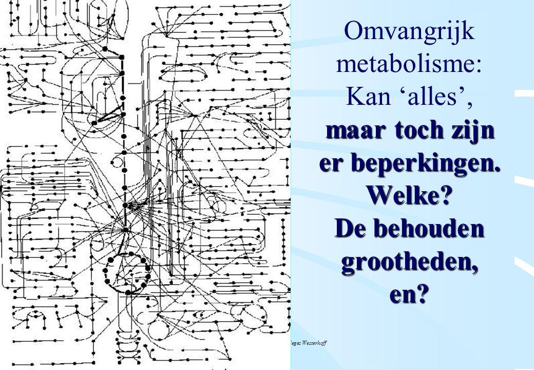 De microbiële cel, november 2008: colleges Westerhoff maar toch zijn er beperkingen. Welke? De behouden grootheden, en? Omvangrijk metabolisme: Kan 'a