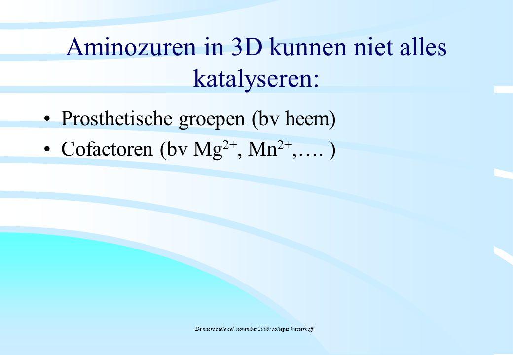 De microbiële cel, november 2008: colleges Westerhoff Aminozuren in 3D kunnen niet alles katalyseren: Prosthetische groepen (bv heem) Cofactoren (bv M