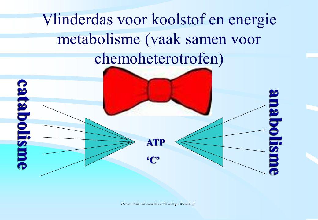 De microbiële cel, november 2008: colleges Westerhoff Vlinderdas voor koolstof en energie metabolisme (vaak samen voor chemoheterotrofen) ATP'C' catab