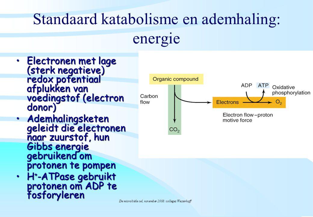 De microbiële cel, november 2008: colleges Westerhoff Standaard katabolisme en ademhaling: energie ElectronenElectronen met lage (sterk negatieve) red