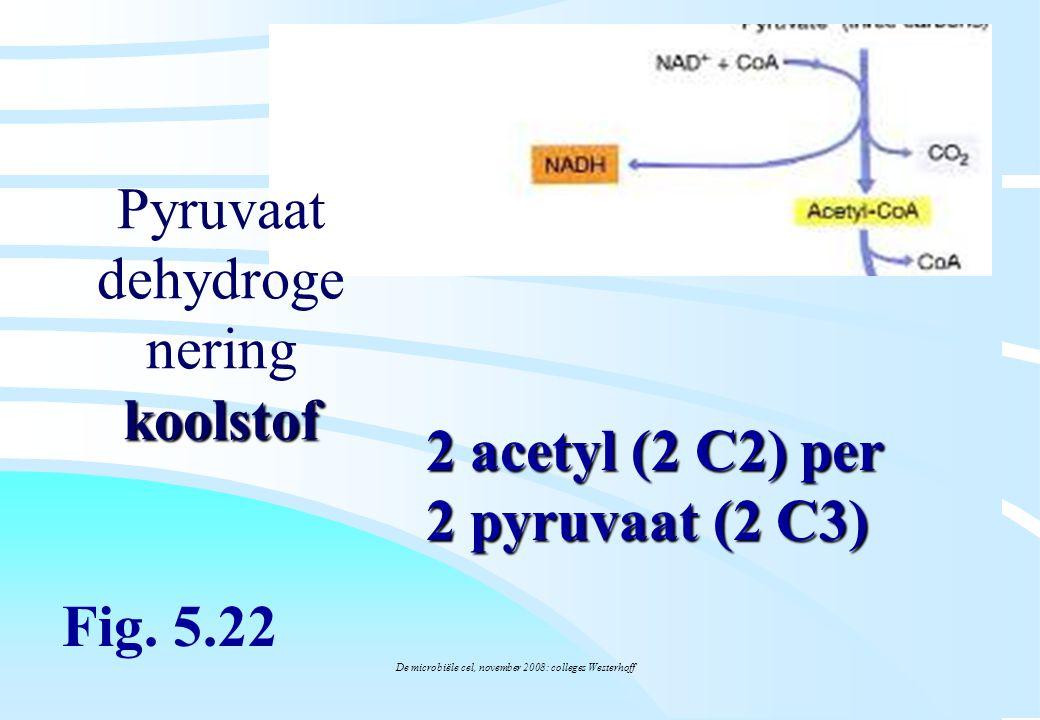 De microbiële cel, november 2008: colleges Westerhoff koolstof Pyruvaat dehydroge nering koolstof Fig. 5.22 2 acetyl (2 C2) per 2 pyruvaat (2 C3)
