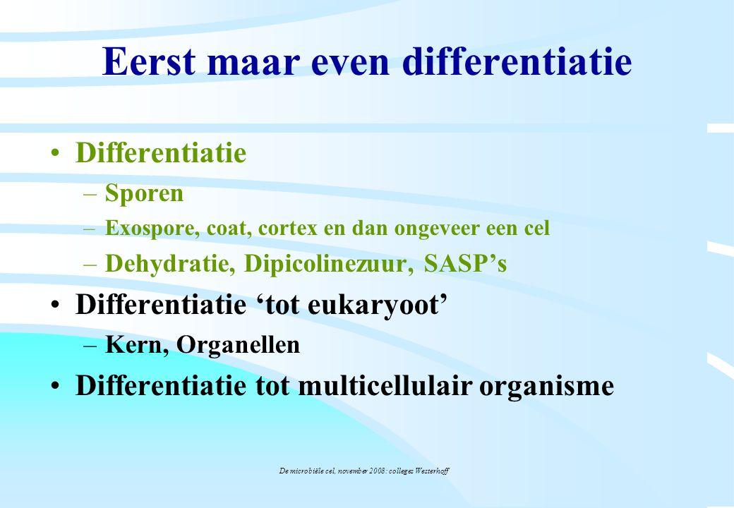 De microbiële cel, november 2008: colleges Westerhoff Eerst maar even differentiatie Differentiatie –Sporen –Exospore, coat, cortex en dan ongeveer ee