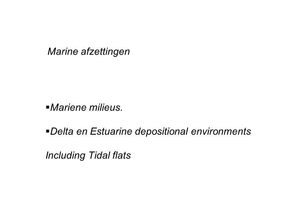 Marine afzettingen  Mariene milieus.