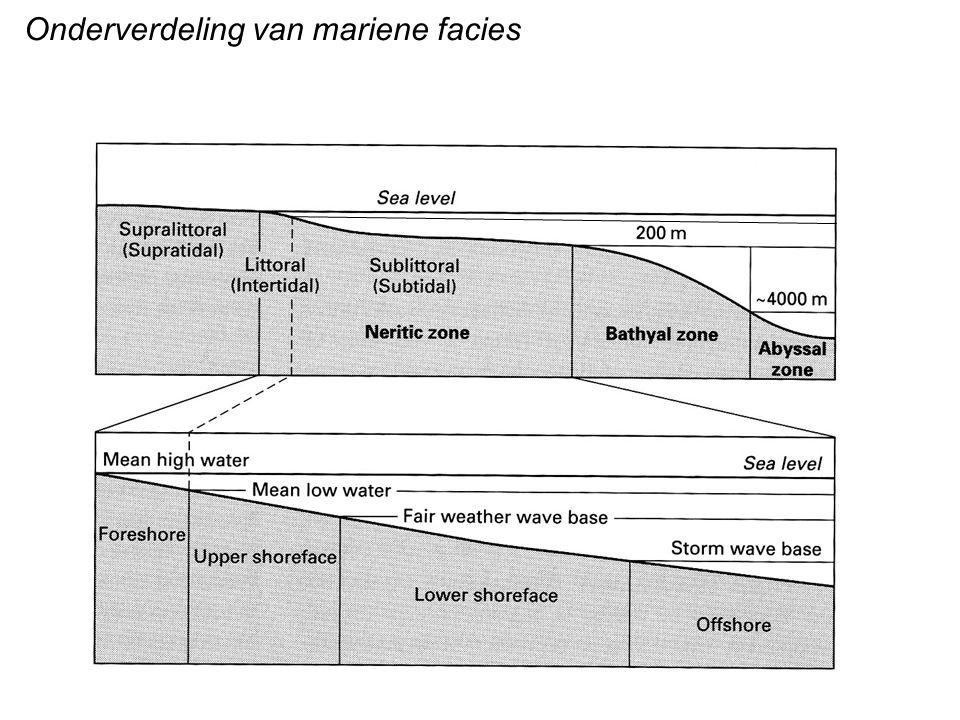 Onderverdeling van mariene facies
