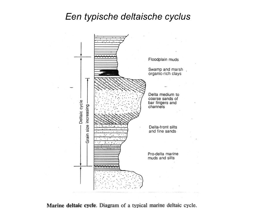 Een typische deltaische cyclus