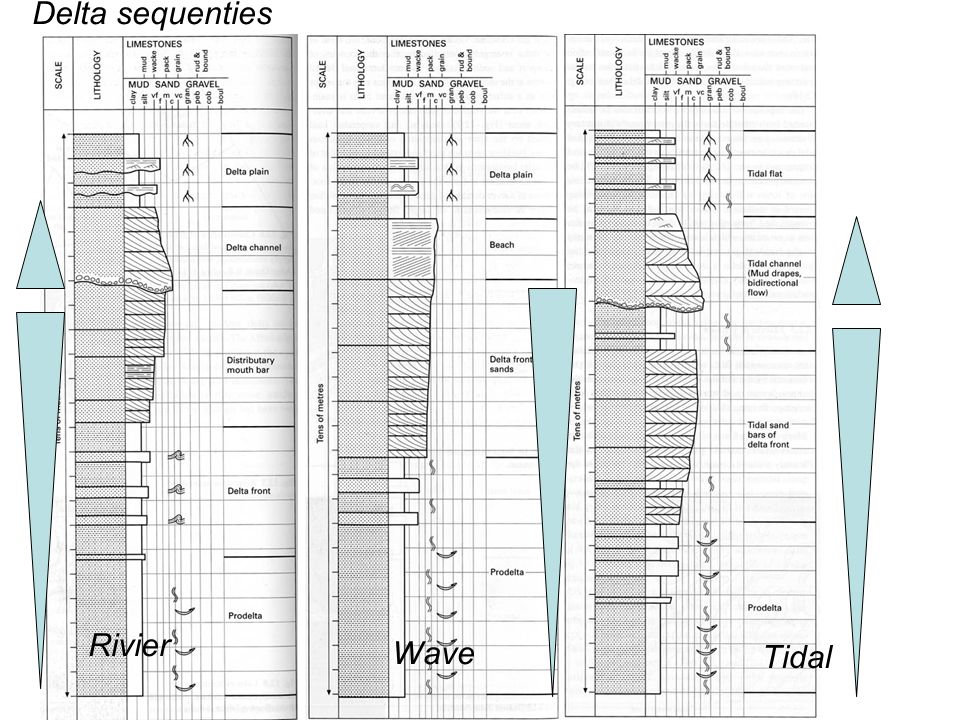 Delta sequenties Tidal Rivier Wave