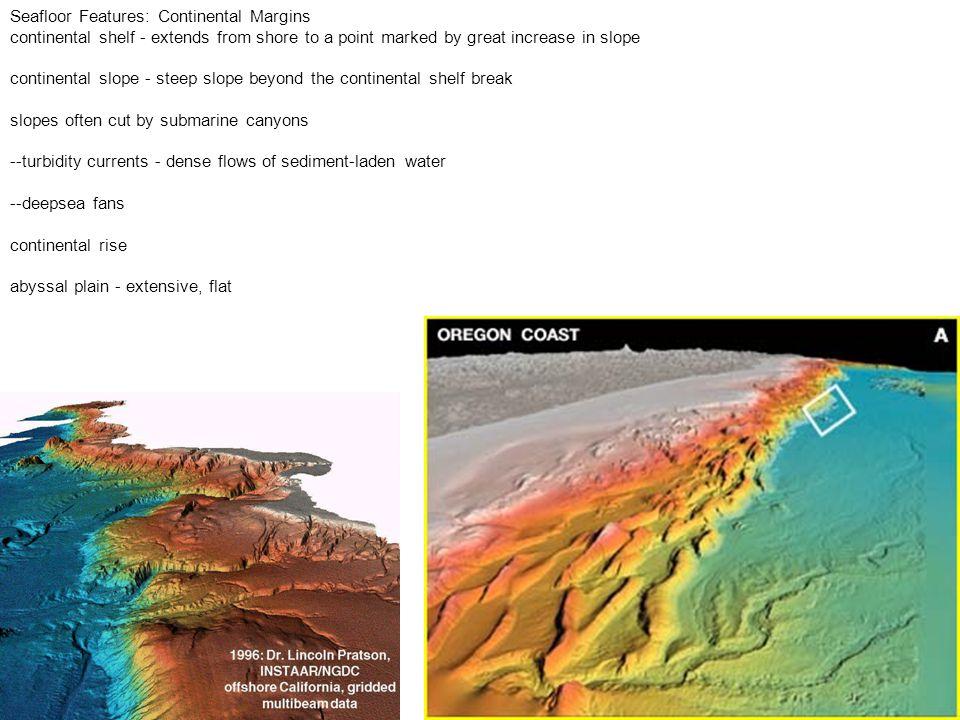 Continental slope Shelf Slope Continental rise Abyssal plane Veel diep ingesneden canyons