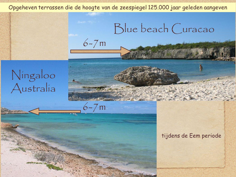 27 Ningaloo Australia 6-7m tijdens de Eem periode 6-7m Blue beach Curacao Opgeheven terrassen die de hoogte van de zeespiegel 125.000 jaar geleden aangeven