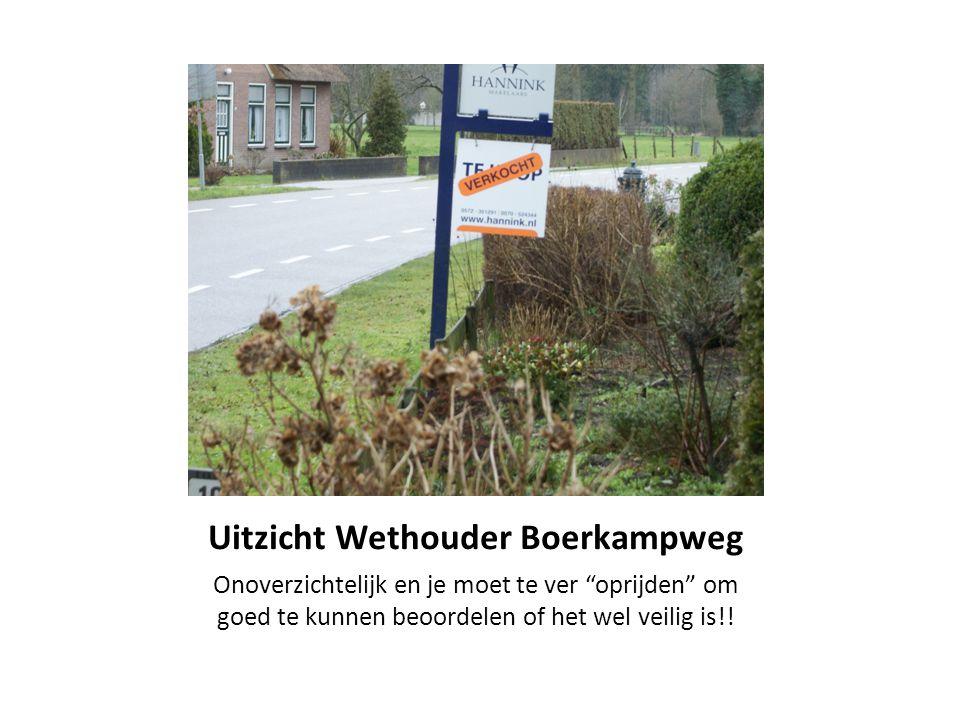 """Uitzicht Wethouder Boerkampweg Onoverzichtelijk en je moet te ver """"oprijden"""" om goed te kunnen beoordelen of het wel veilig is!!"""
