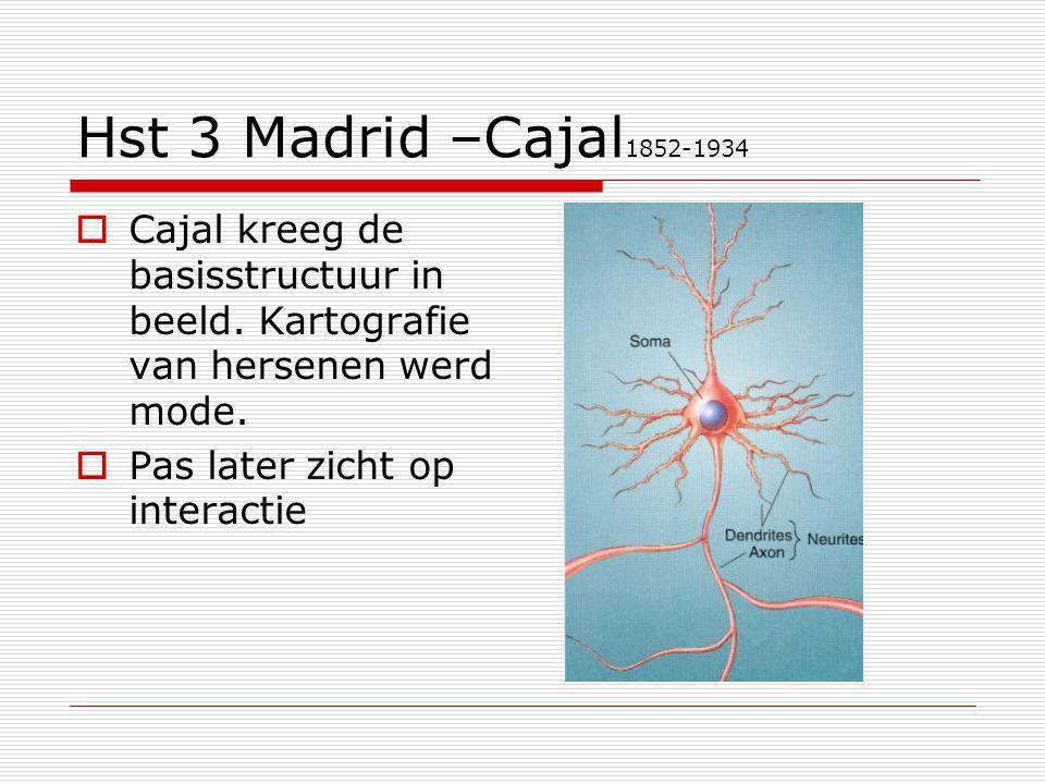 Hst 3 Madrid –Cajal 1852-1934  Cajal kreeg de basisstructuur in beeld. Kartografie van hersenen werd mode.  Pas later zicht op interactie