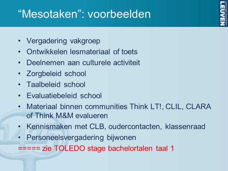 """""""Mesotaken"""": voorbeelden Vergadering vakgroep Ontwikkelen lesmateriaal of toets Deelnemen aan culturele activiteit Zorgbeleid school Taalbeleid school"""