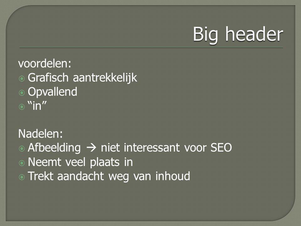 voordelen:  Grafisch aantrekkelijk  Opvallend  in Nadelen:  Afbeelding  niet interessant voor SEO  Neemt veel plaats in  Trekt aandacht weg van inhoud
