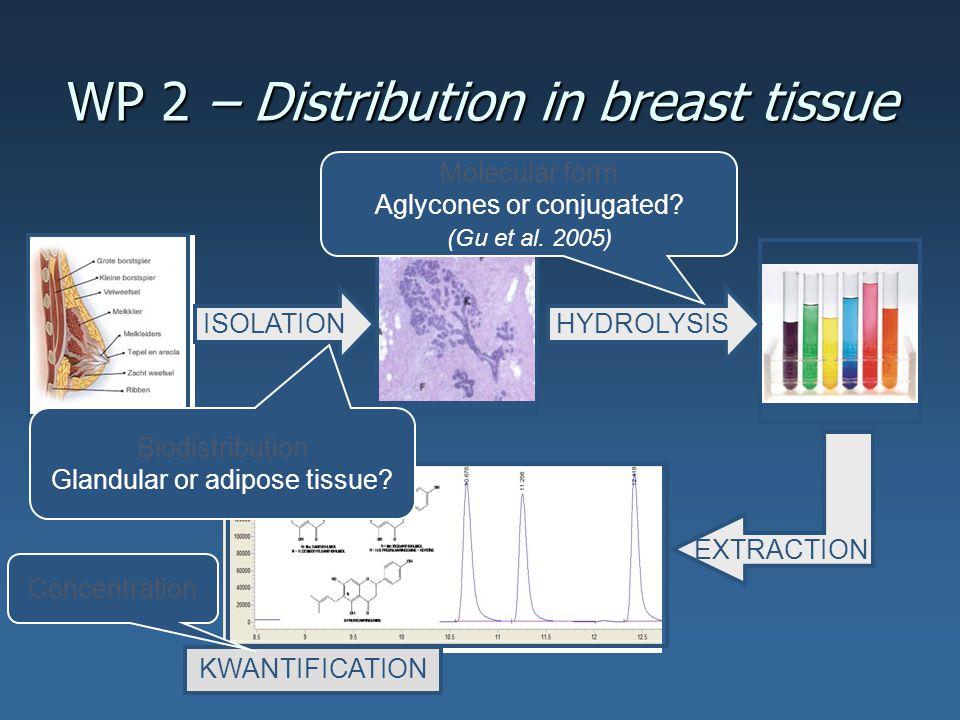 Discrepantie tussen in vitro en in vivo resultaten: Tangeritine.