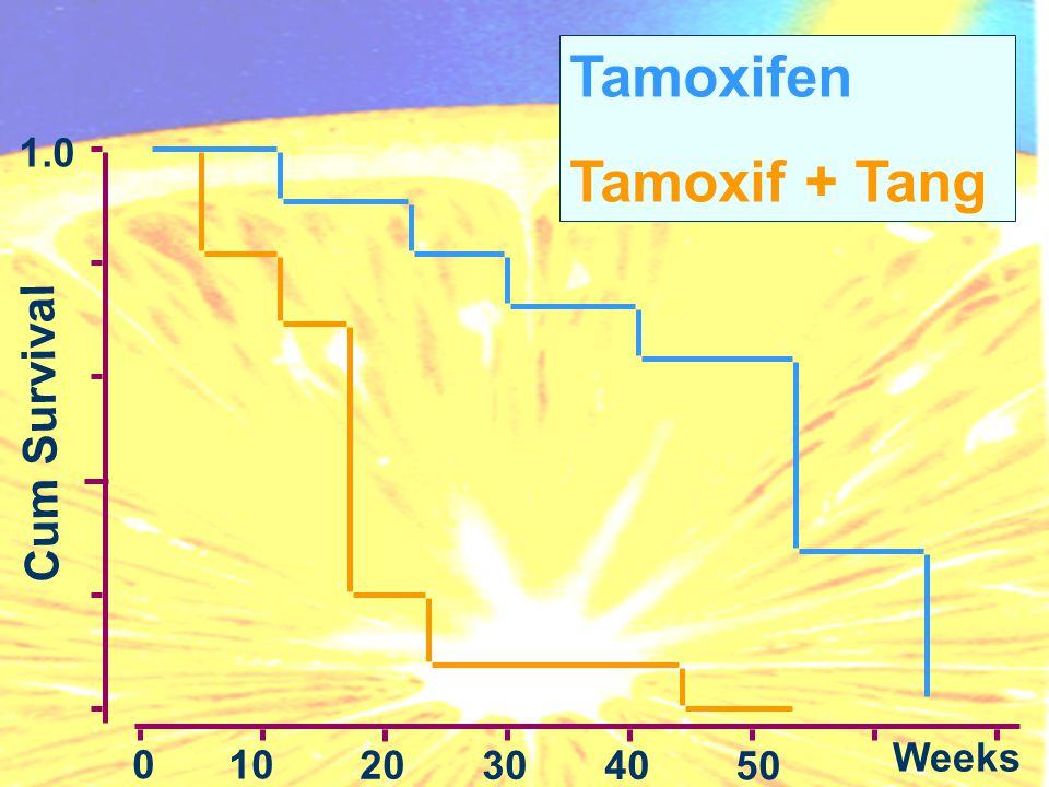 Cum Survival 1.0 0 10 20 3040 50 Weeks Tamoxifen Tamoxif + Tang