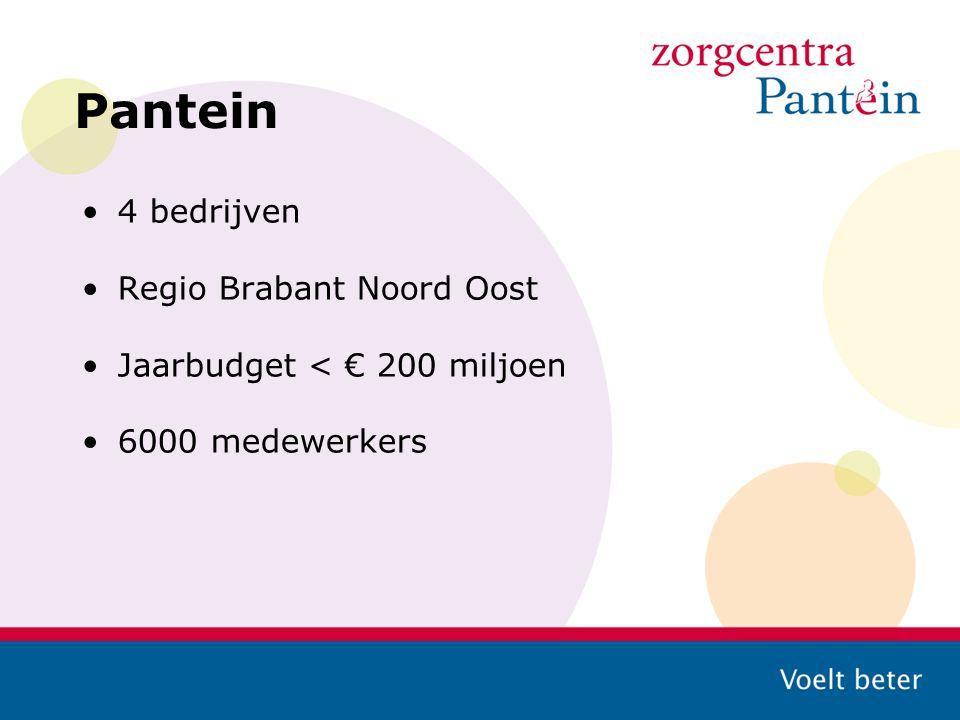 Pantein 4 bedrijven Regio Brabant Noord Oost Jaarbudget < € 200 miljoen 6000 medewerkers