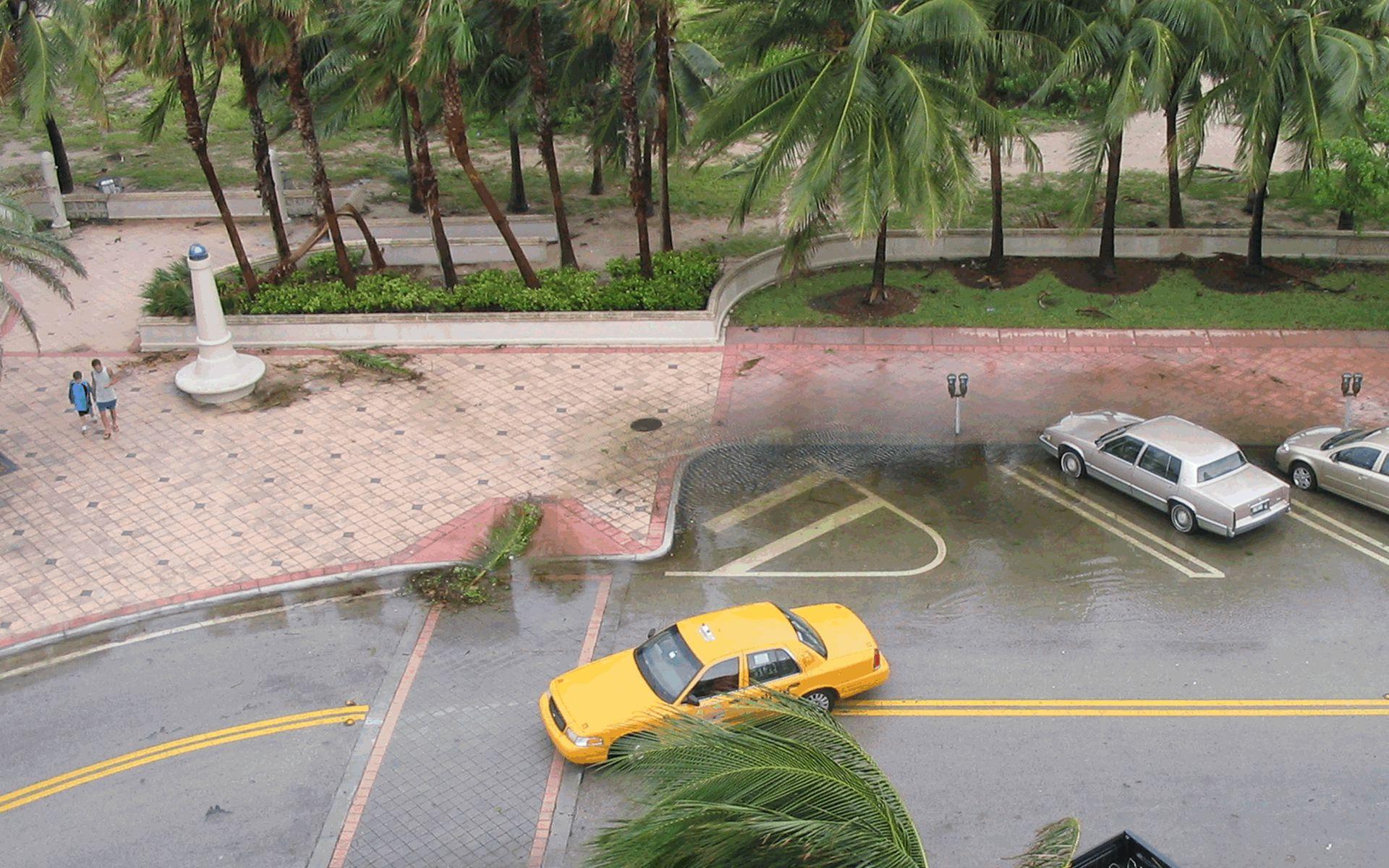 Gevolgen van orkanen - Stijging zeespielel, veel neerslag --> overstromingen --> Mens kan slecht tegen gevolgen, natuur veel beter.