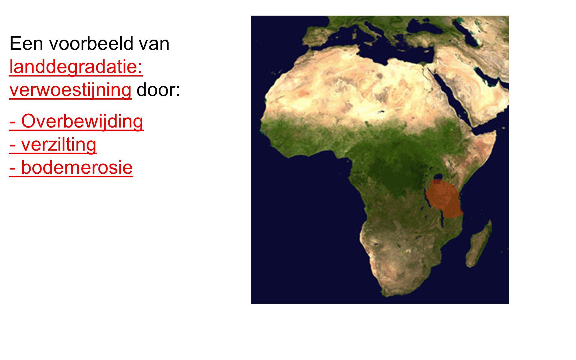 Een voorbeeld van landdegradatie: verwoestijning door: - Overbewijding - verzilting - bodemerosie