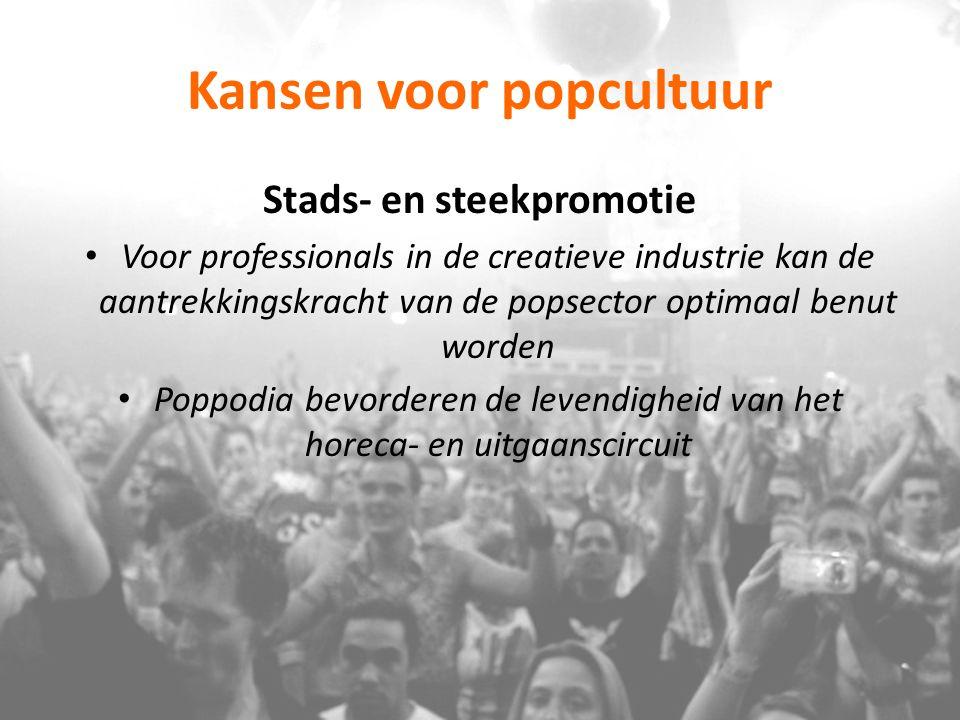 Kansen voor popcultuur Stads- en steekpromotie Voor professionals in de creatieve industrie kan de aantrekkingskracht van de popsector optimaal benut