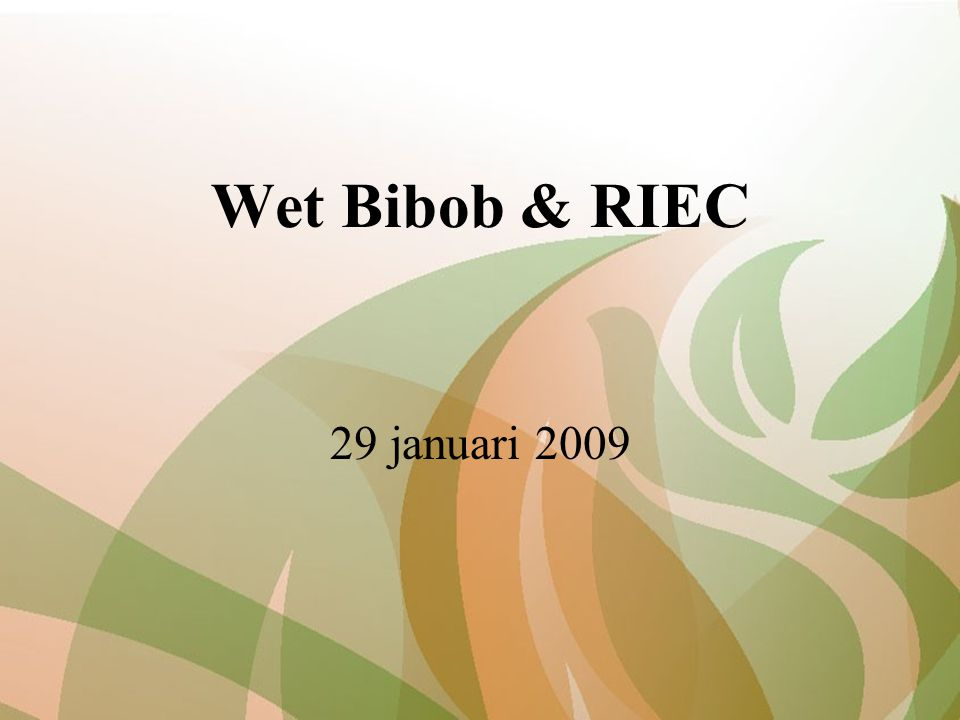 Wet Bibob & RIEC 29 januari 2009