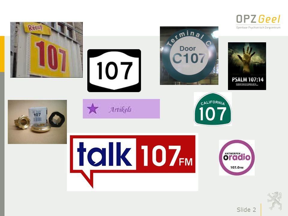 Gids naar een betere GGZ door de realisatie van zorgcircuits en netwerken www.psy107.be