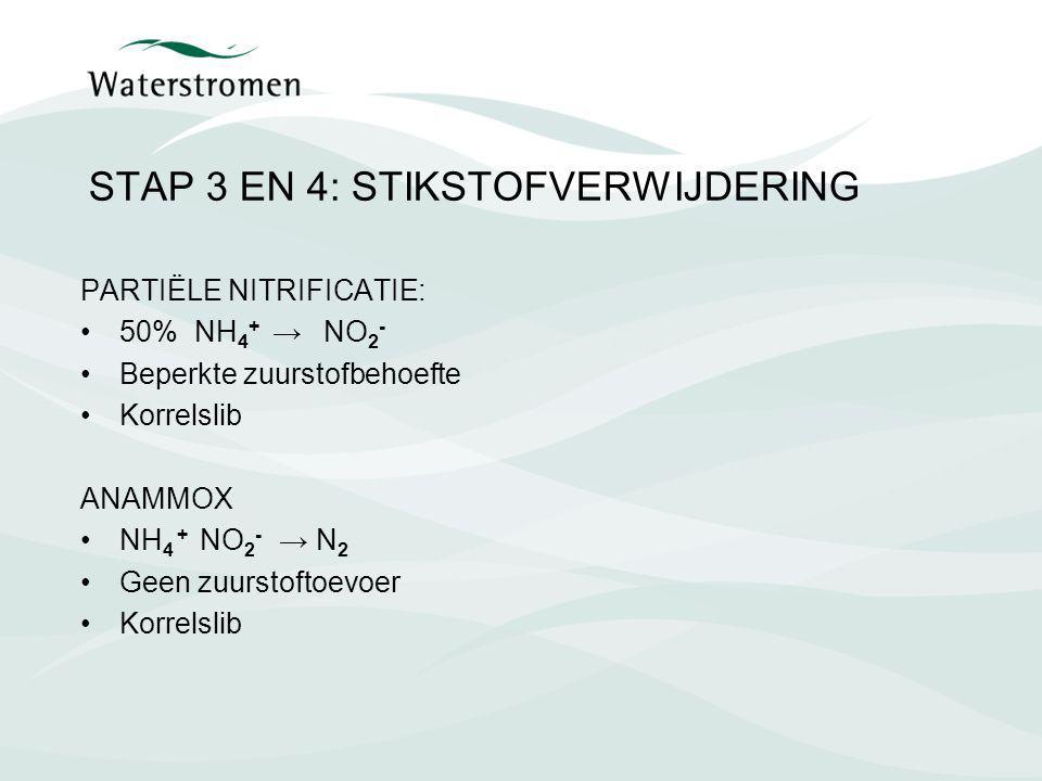 STAP 3 EN 4: STIKSTOFVERWIJDERING PARTIËLE NITRIFICATIE: 50% NH 4 + → NO 2 - Beperkte zuurstofbehoefte Korrelslib ANAMMOX NH 4 + NO 2 - → N 2 Geen zuu
