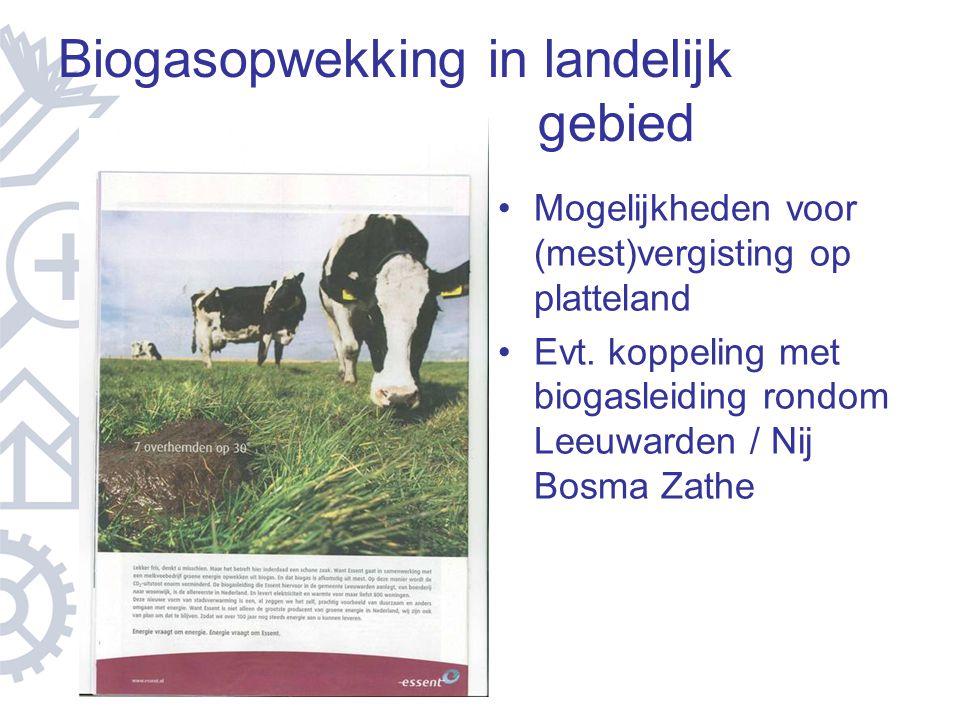 Biogasopwekking in landelijk gebied Mogelijkheden voor (mest)vergisting op platteland Evt. koppeling met biogasleiding rondom Leeuwarden / Nij Bosma Z