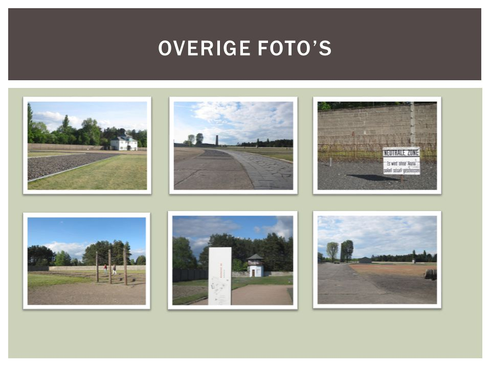 OVERIGE FOTO'S