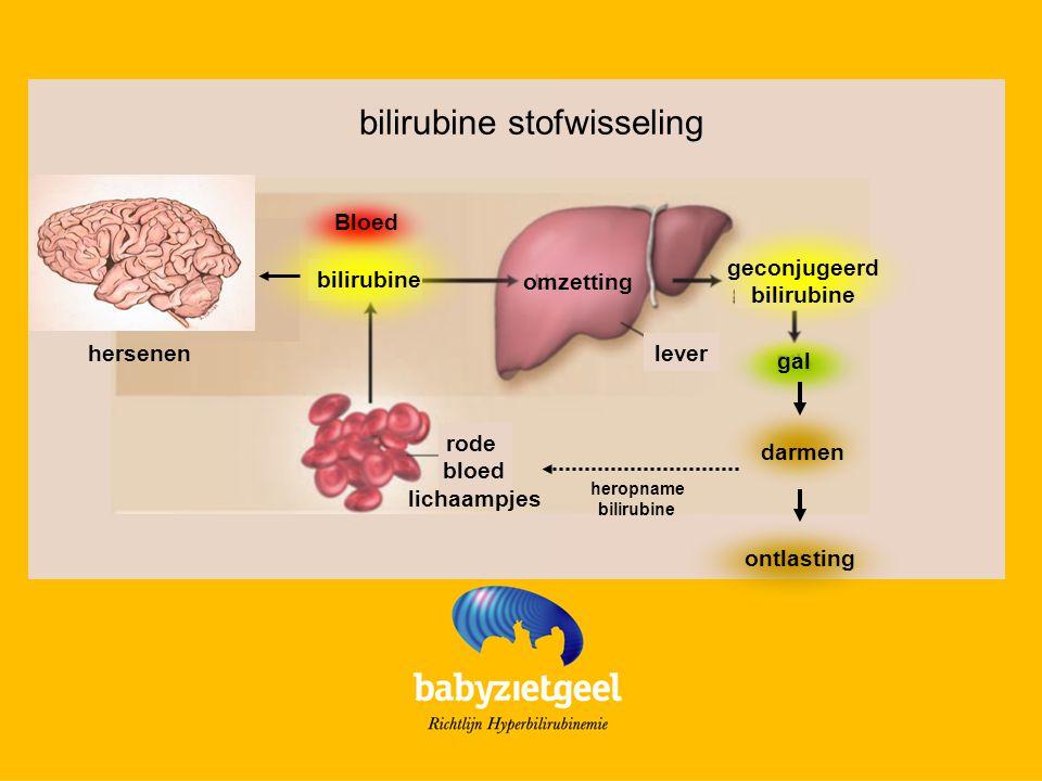 Pathologische Hyperbilirubinemie Te snel geel (<24hr), te hoog TSB, te lang hoog TSB Oorzaken - te veel bilirubine gemaakt - te weinig bilirubine omgezet - te trage uitscheiding van bilirubine