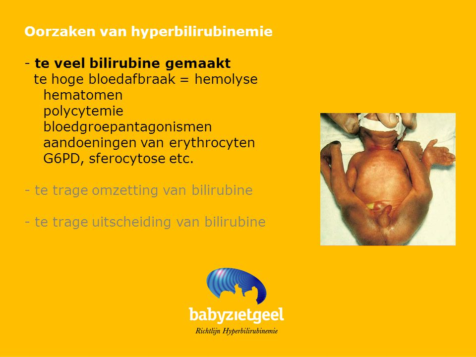 Oorzaken van hyperbilirubinemie - te veel bilirubine gemaakt Hematomen blauwe stuit Cefaal hematoom