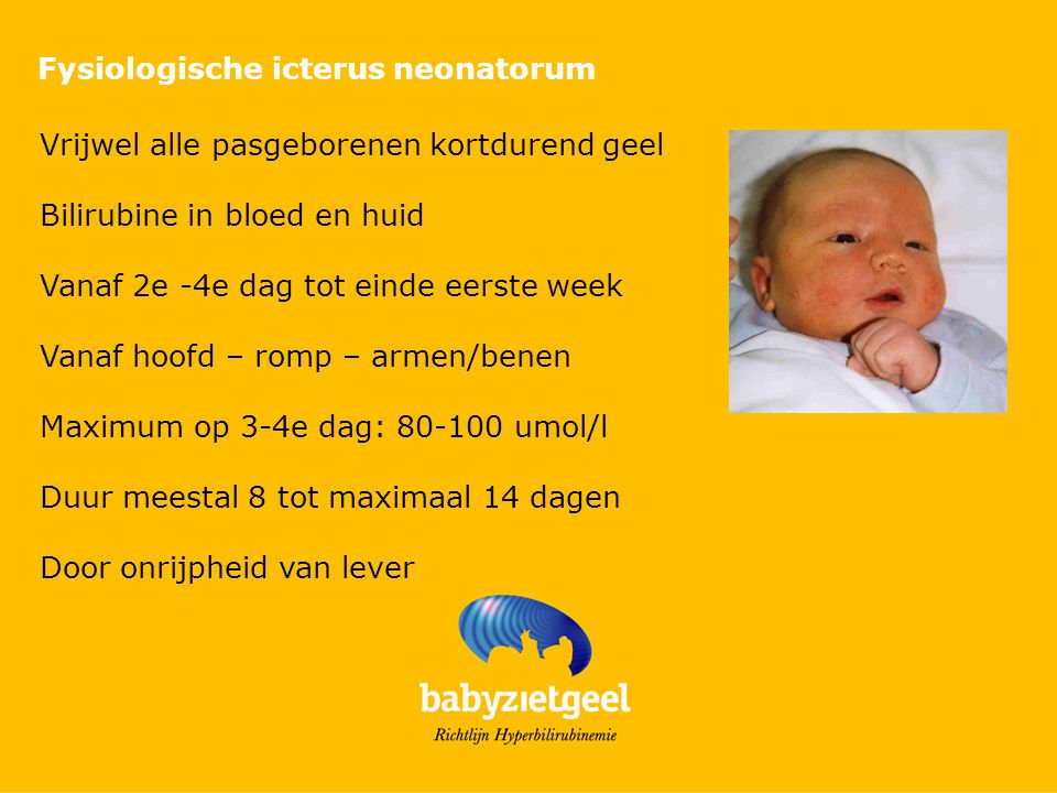 Fysiologische icterus neonatorum Vrijwel alle pasgeborenen kortdurend geel Bilirubine in bloed en huid Vanaf 2e -4e dag tot einde eerste week Vanaf ho