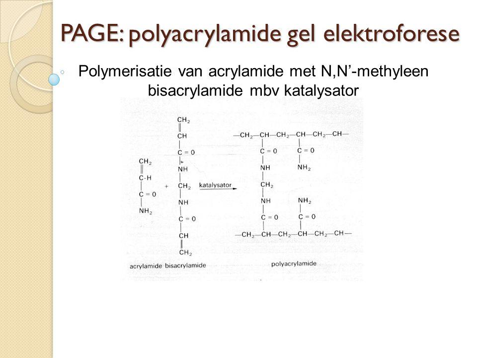 PAGE: polyacrylamide gel elektroforese Polymerisatie van acrylamide met N,N'-methyleen bisacrylamide mbv katalysator
