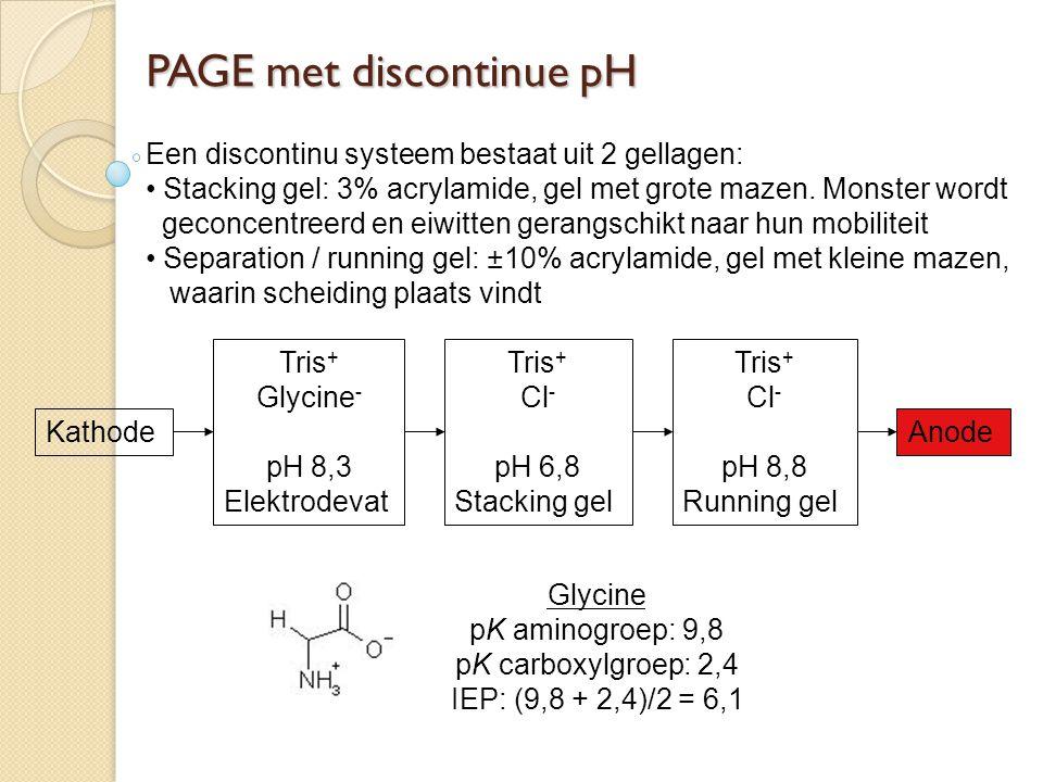 PAGE met discontinue pH Een discontinu systeem bestaat uit 2 gellagen: Stacking gel: 3% acrylamide, gel met grote mazen. Monster wordt geconcentreerd