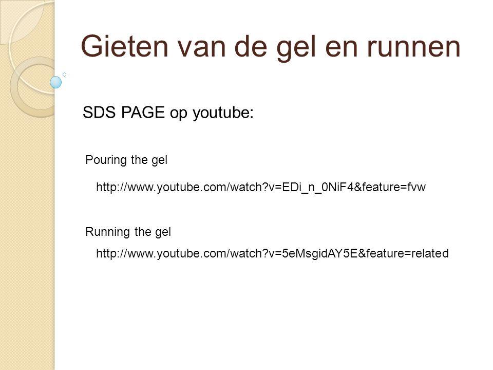 Gieten van de gel en runnen Pouring the gel Running the gel SDS PAGE op youtube: http://www.youtube.com/watch?v=EDi_n_0NiF4&feature=fvw http://www.you