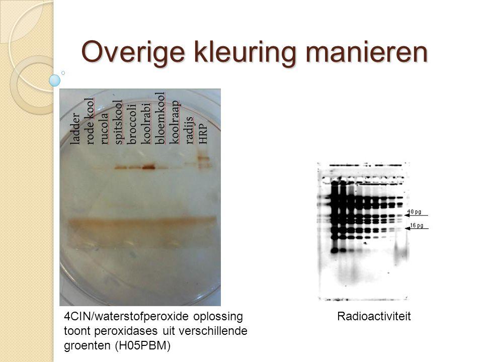 Overige kleuring manieren Radioactiviteit4CIN/waterstofperoxide oplossing toont peroxidases uit verschillende groenten (H05PBM)