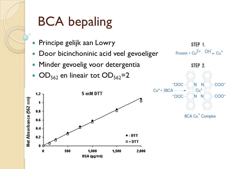BCA bepaling Principe gelijk aan Lowry Door bicinchoninic acid veel gevoeliger Minder gevoelig voor detergentia OD 562 en lineair tot OD 562 =2