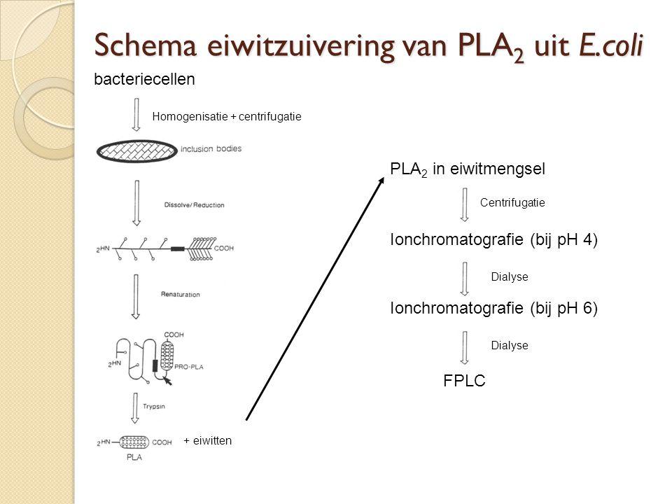 10 L Kweek medium met bacteriecellen Centrifugeren Bacteriecellen in 300 ml TE buffer (pH 8) + 75 gr.