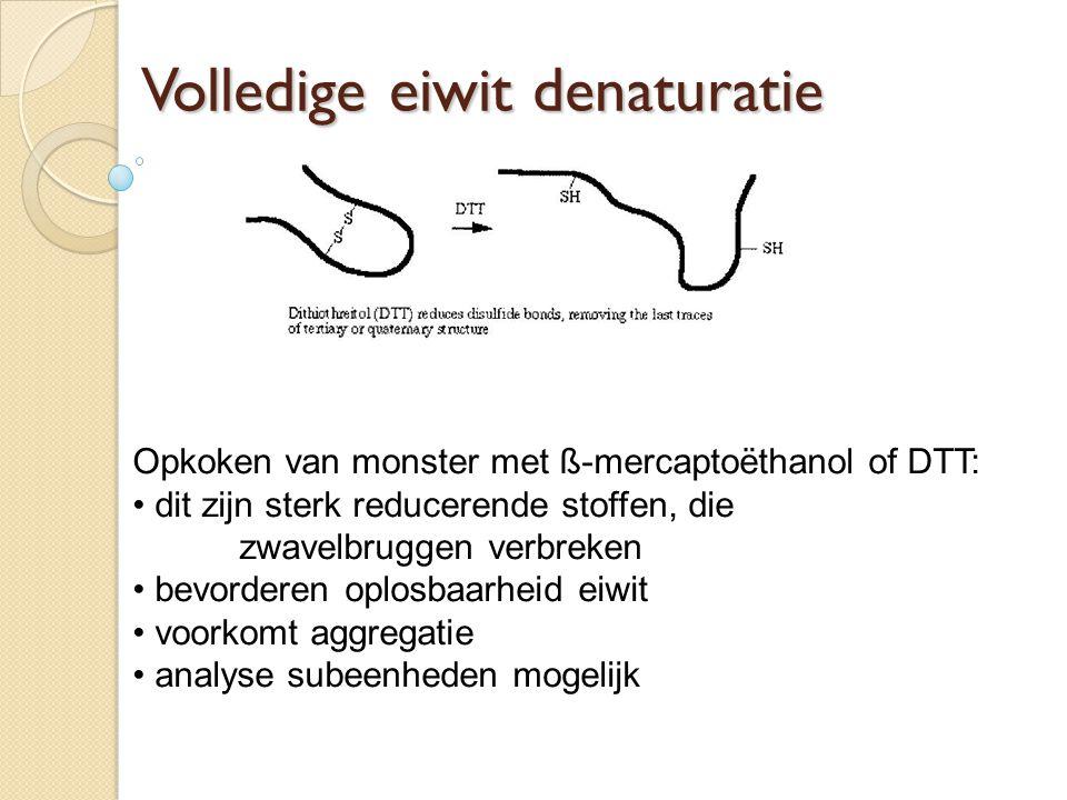 Volledige eiwit denaturatie Opkoken van monster met ß-mercaptoëthanol of DTT: dit zijn sterk reducerende stoffen, die zwavelbruggen verbreken bevorderen oplosbaarheid eiwit voorkomt aggregatie analyse subeenheden mogelijk
