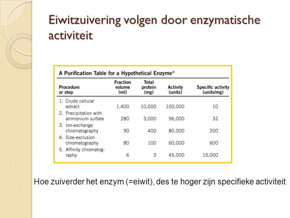 Eiwitzuivering volgen door enzymatische activiteit Hoe zuiverder het enzym (=eiwit), des te hoger zijn specifieke activiteit