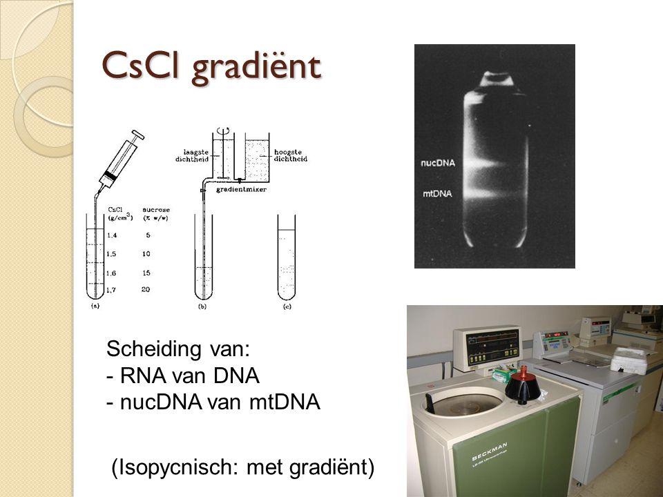 Scheiding van: - RNA van DNA - nucDNA van mtDNA CsCl gradiënt (Isopycnisch: met gradiënt)