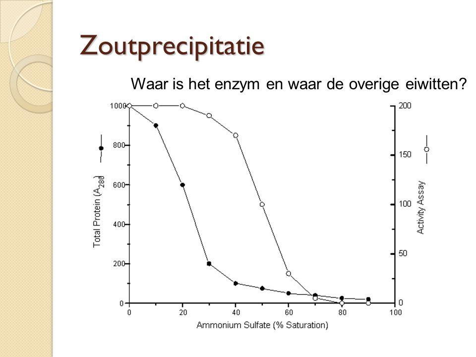 Zoutprecipitatie Waar is het enzym en waar de overige eiwitten?